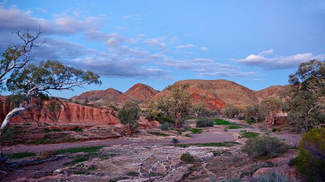 6 Day Flinders Ranges Outback & Highlights of Kangaroo Island Tour